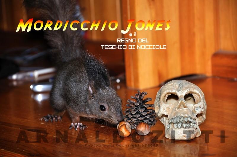 Mordicchio Jones e il regno del teschio di Nocciole