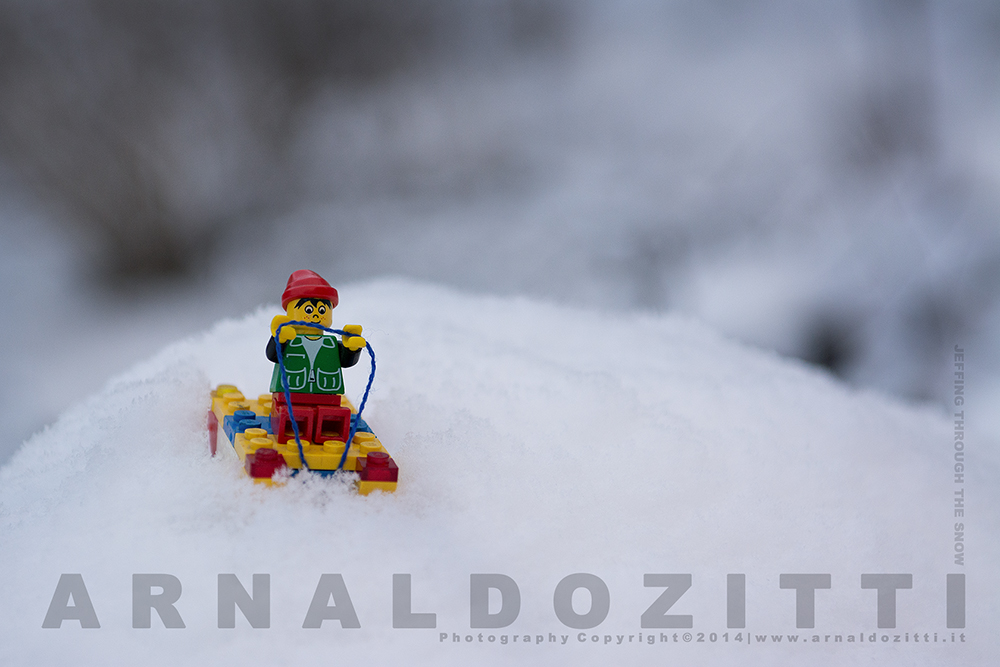 ZAR_20266_WEB