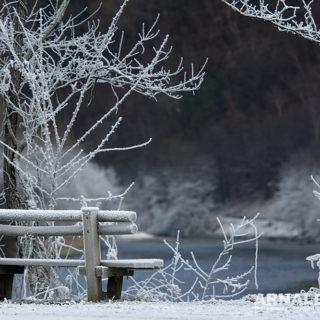 Natura & Paesaggi 2017