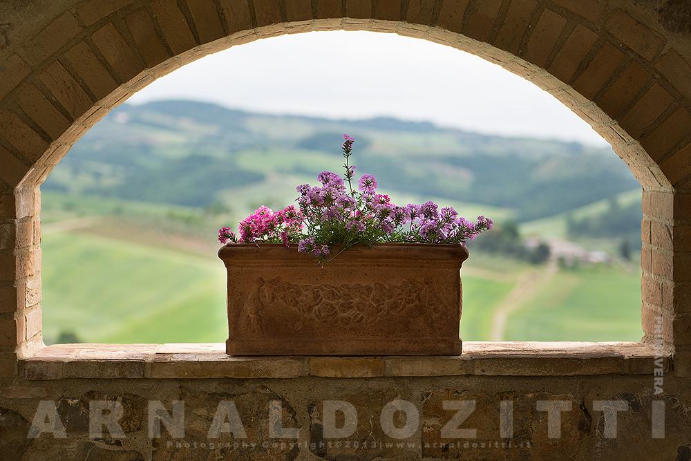 Tuscan Rewind 2013