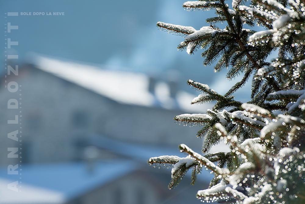Mattina dopo la nevicata